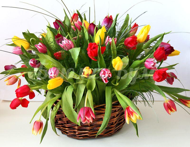 Тюльпаны в корзине открытки