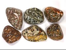 Яшма Леопардовая, галтовка в ассортименте, Мексика (27-40 мм, 10-14 г) №13245