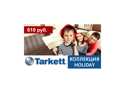 Ламинат Tarkett HOLIDAY 832