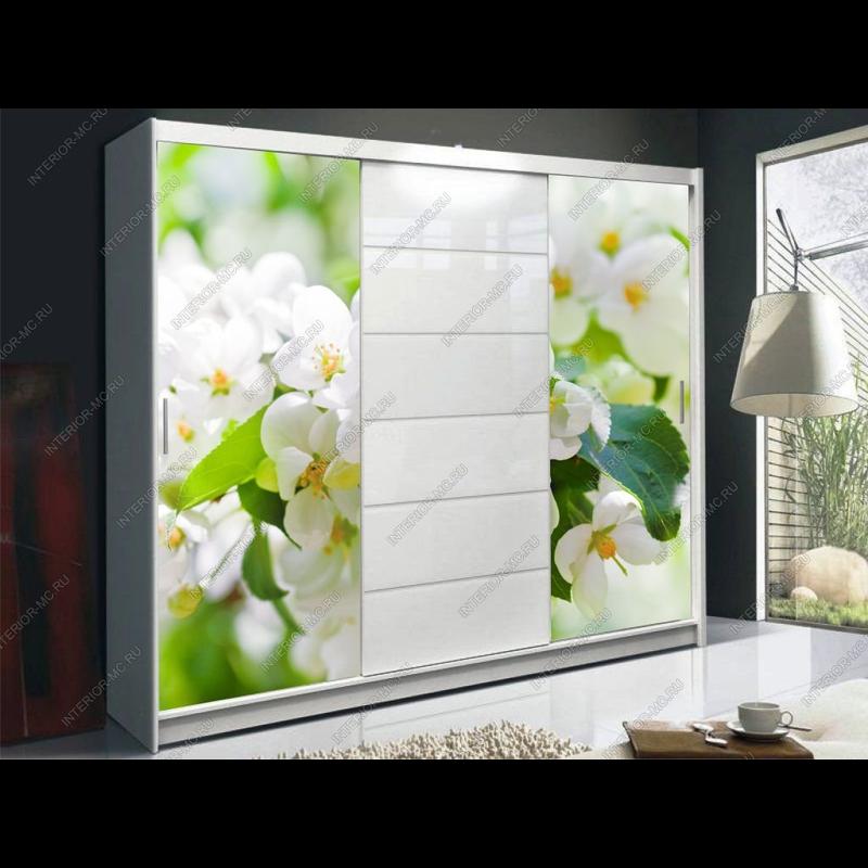 Белый шкаф купе с фотопечатью цветы