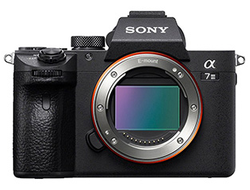 Фотоаппарат Sony A7 Mark III Body