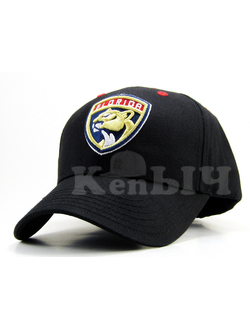 Бейсболка Florida Panthers