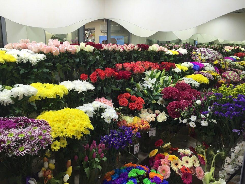 Оптовая база продажи живых цветов в воронеже