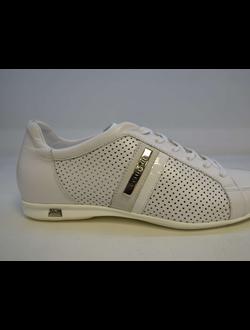 6548d43f Roberto Botticelli ( Роберто Боттичелли ) обувь купить в магазине ...