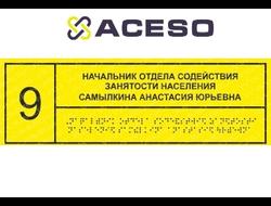Информационно-тактильный знак (табличка), 300х150 мм, рельефный, пластик