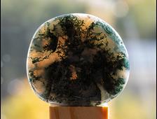 Агат моховой полировка плоская, Ботсвана (43*39*9 мм, 28 г) №20330