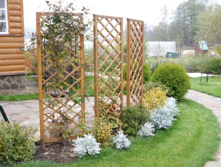 садовая шпалера своими руками фото наградами станут только