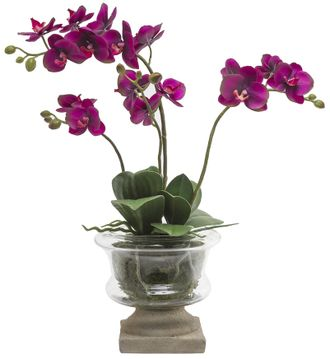 Цветок в горшке  SIA MARYLIN ORCHID GLASS POT SMALL , 060252 ,