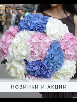 tsveti-rostov-kruglosutochno-dostavka-tsvetov-balashiha-deshevo