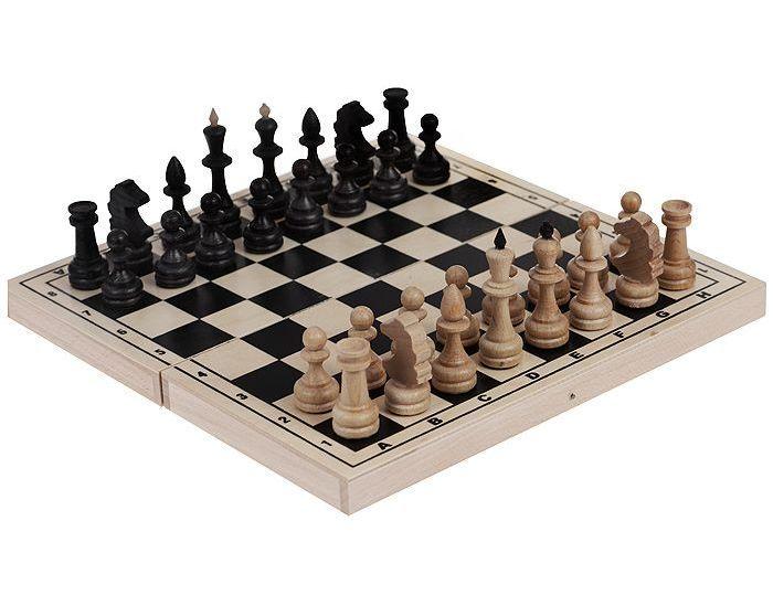 Фото шахматы обиходные бук