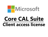 Microsoft Core CAL ENG Lic/SAPk OLP C Government User CAL W06-00423