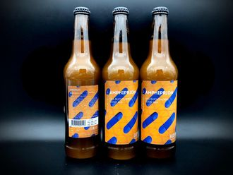 Amphiprion Sour - Fruited Амфиприон Кислое пиво с Облепихой 5.6% IBU 12 0.5л (180) Bakunin Brewery в Бутылке