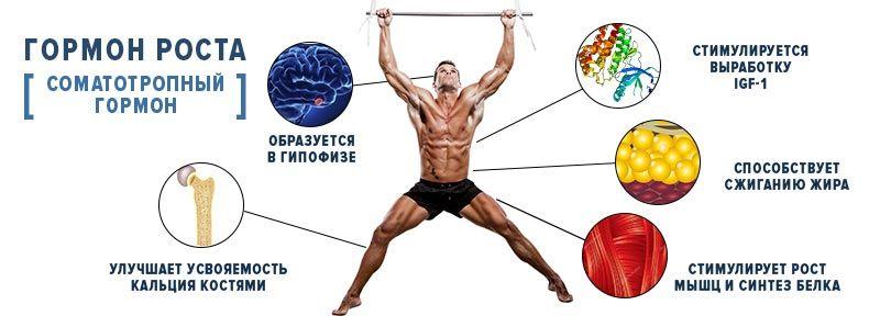 гормон роста