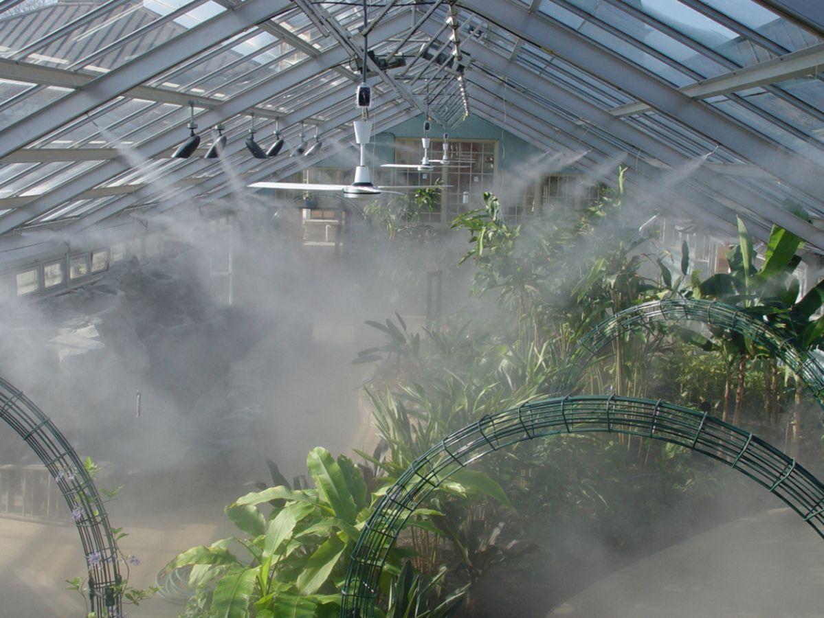 Применение тумана в оранжереях