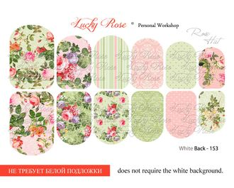 Lucky Rose WB-153