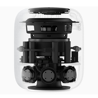 Apple HomePod black (черный)