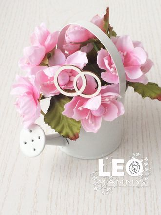 LM -L08 - кольца