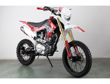 Wels CRF 250 (Monster 250)