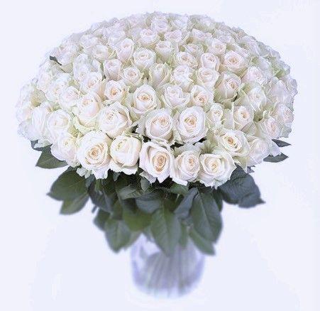 Корзинах оптом букеты из 101 розы дешево
