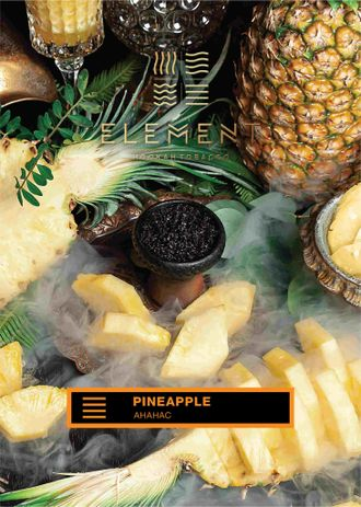 Табак Element Pineapple Ананас Земля 40 гр