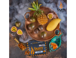 Табак Burn Feel Good Тропики 100 гр