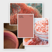 Sherwin-Williams: цвет месяца июнь 2020 - SW 9005 Coral Clay