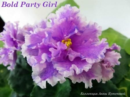 Bold Party Girl фото