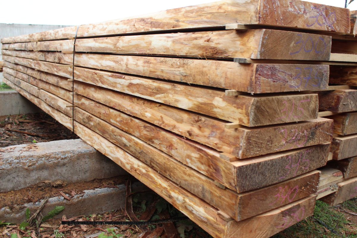 Direct deliveries of larch to Europe