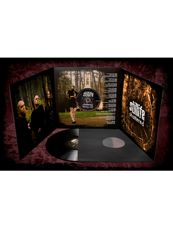 Stillife - Shattered LP DELUXE + CD