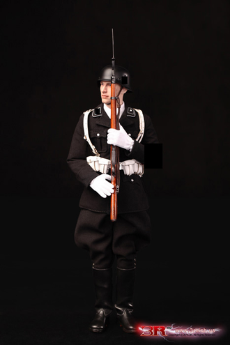 Коллекционная фигурка 1/6 Aaron  WW2 Leibstandarte (LAH) Honor Guard GM635 - DID 3R