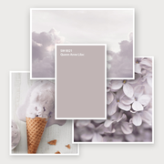 Sherwn-Williams: цвет месяца август 2018 - SW 0021 Queen Anne Lilac
