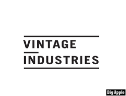 Брюки карго Vintage Industries