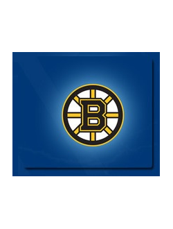 Бостон Брюинз / Boston Bruins