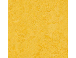 marmoleum  модульный colour t3251 lemon zest