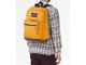 Jansport Right Pack English Mustard на мужчине