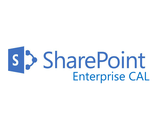 Microsoft SharePoint Enterprise CAL 2016 SNGL OLP NL User CAL 76N-03787