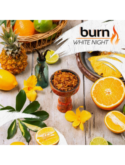 Табак Burn White Night 100 гр.
