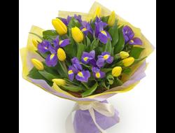 Цветов купить букет из 17 тюльпанов цветы городе киеве