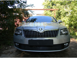 Защита радиатора Skoda Superb 2013-2015 black PREMIUM