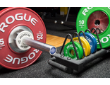 10KG FG Change Plate Set Диски для штанги Rogue Fitness