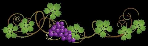 """Где можно купить хорошее домашнее вино в Сочи и Адлере - Частная винодельня """"Бабушкина Хата"""""""