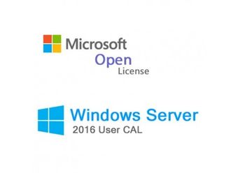 Microsoft Windows Rights Management Services CAL 2016 SNGL OLP C User CAL T98-02810