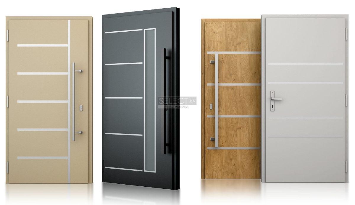 vhodnye-sovremennye-dveri-s-framugoj-iz-stekla-alyuminievye-teplye-gruppy-v-chastnyj-dom-odessa
