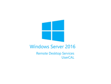 Microsoft Windows Remote Desktop Services CAL RUS Lic SAPk OLP A Gov UsrCAL 6VC-01226