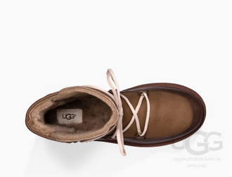 Men's Levy - Chestnut
