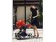 Cybex cloud q Plus Stardust Black