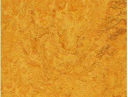Линолеум Натуральный Мармолеум (Marmoleum Real) 3125 golden sunset