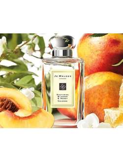 JO MALONE LONDON Nectarine Blossom & Honey Cologne