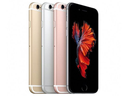 Apple iPhone 6 Plus, ремонт в Калининграде