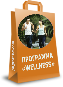 "Программа ""WELLNESS-PHYT""©"